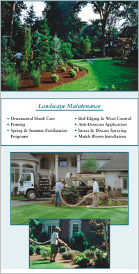 Mulch Maintenance, Mulch, Mulch blown installation, Mulch blower, Mulching, Hemlock mulch, Cedar mulch, Red mulch, Bark mulch, Pruning, Edging, Planting