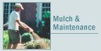 Mulch & Maintenance