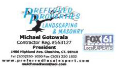 Landscape lighting company, Outdoor lighting specialist, Night lighting demo