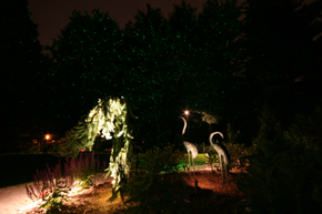 Star Lights: Outdoor Lighting, Landscape Lighting Designer, Low Voltage Lighting, Landscape Lighting, 100,000 stars